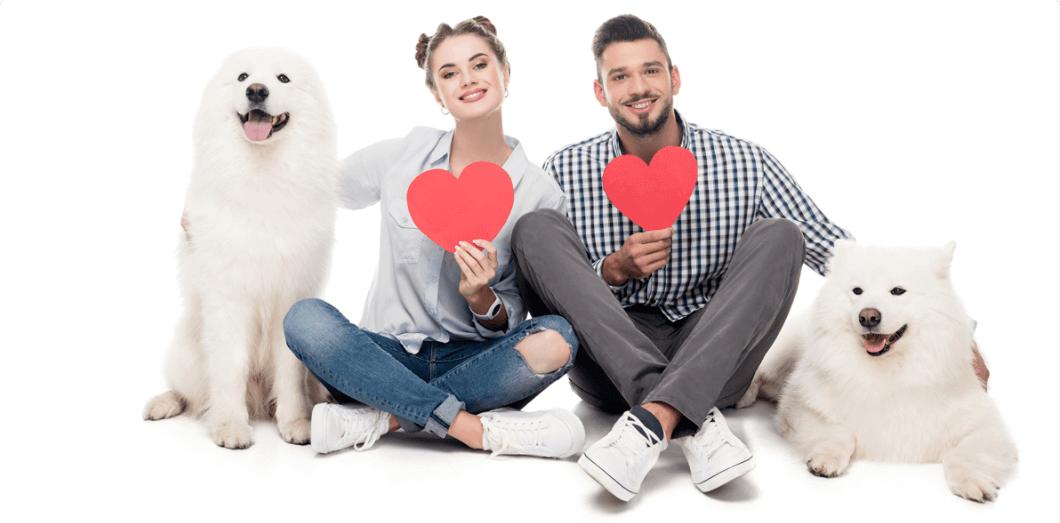 puppi-lovers-app